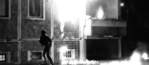 24.August im Conne Island: Sonnenblumenhaus – Das Pogrom in Rostock-Lichtenhagen
